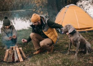 What temperature does your dog need a coat?