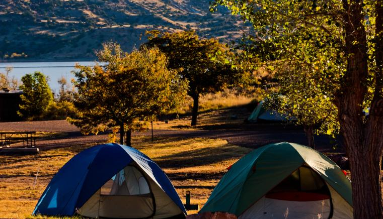 select a campspot in nature