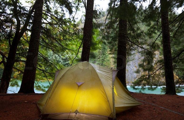 choose woods as campsite